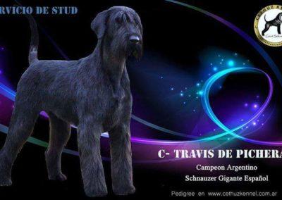 travis1